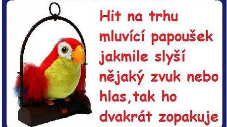 Zábavný legrační papoušek vše opakuje co mu řeknete za 199kč-poštovné zdarma