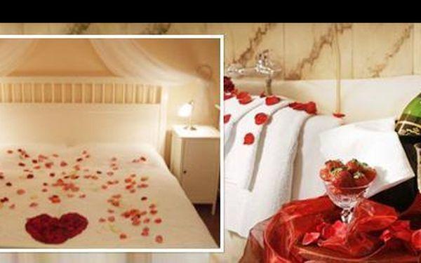 3 denní romantický pobyt pro 2 osoby se snídaní, lahví sektu, ovocným talířem, rudou růží pro dámu a wellness, v luxusním pensionu Lucie**** Superior v Praze.