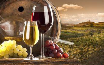 3denní relax s degustací vína v Hotelu Golf Garni na jižní Moravě