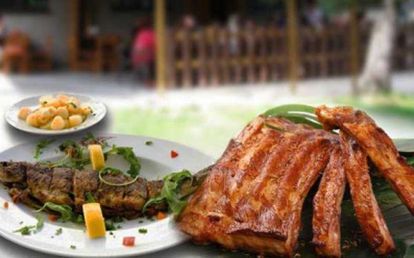 300 g PSTRUH, 700g vepřová ŽEBRA, 4x chléb, okurky, křen, kozí rohy, hořčice. Vyberte si celé menu nebo jen pstruha s brambory či vepřová žebra již od lahodných 99 Kč! Pošmákněte si s 50% slevou!