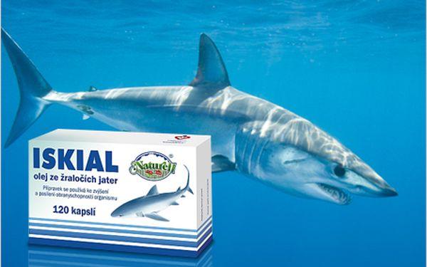 Zvyšte svou obranyschopnost díky oleji ze žraločích jater! Vhodné i pro děti.
