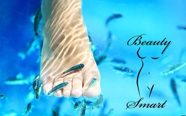 Nevšední relaxace s rybkami Garra Rufa – 30minutová koupel nohou