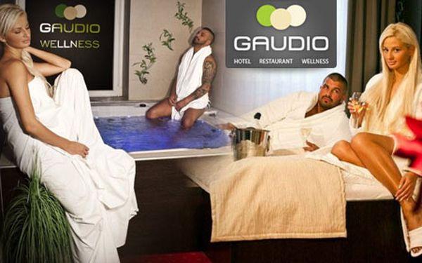 Jen 1 430 Kč za 2 denní pobyt pro 2 osoby se snídaní, welcome drinkem a 2-hodinovým vstupem do wellness v Hotelu Gaudio *** v Bratislavě!