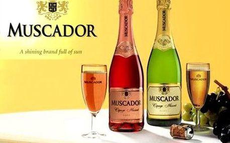 Muškátové šumivé víno! Dovoz z francouzských vinic. Kvalitní bílé i růžové!
