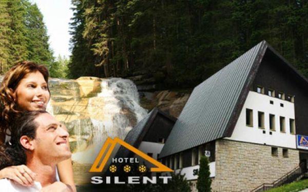 Ubytování na 3 DNY PRO 2 s POLOPENZÍ v Harrachově za pouhých 1 199 Kč! Navíc lahev VÍNA na pokoji! Horský Hotel Silent v krásné přírodě Krkonoš se slevou 39%!