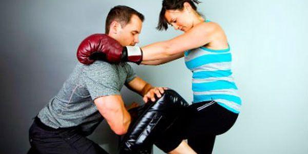 Licence cvičitele sebeobrany! Staňte se cvičitelem sebeobrany díky akreditovanému kurzu MŠMT!
