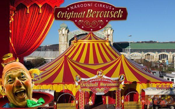 Vstup do cirkusu Berousek, 1 dospělý + 1 dítě