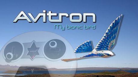 Avitron bionický rádiem řízený pták. Elegantně kopíruje pohyb klasického ptáka.