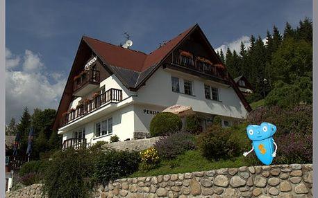 Špindlerův Mlýn, pobyt, 2 osoby, 3 dny, snídaně a vstup do wellness Spa a Relax centra! Aktivní dovolená v Krkonoších se slevou plná zážitků, to je pobyt v penzionu FUKA, Krkonoše! Sleva 39%!