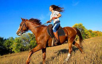 Vyskočte si na koníčka! 45minutová vyjížďka na koních v okouzlujícím prostředí Kolodějí, jen pár minut od Prahy.
