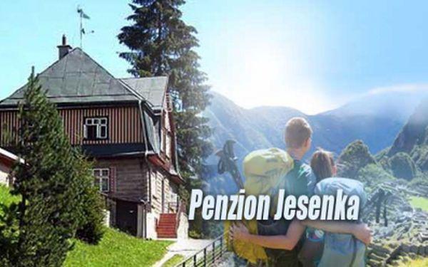 Ubytování na 4 dny s POLOPENZÍ v penzionu Jesenka jen za 990 Kč! Vyražte na dovolenou s rodinou a navštivte safari ve Dvoře Králové nebo skalní město v Adršpachu!