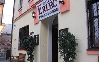 Pobyt v Českém Švýcarsku v hotelu Erlec s...