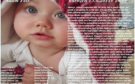 Jedinečná osobní listina pro Vaše dítě! Máte šanci poznat a lépe pochopit Vaši ratolest. Výsledky numerologie, čínské astrologie, kabaly a vycházející ze jména, data a hodiny narození!