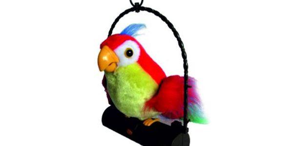 Chcete papouška, kterého můžete naučit mluvit? 299 Kč za papouška, který bude opakovat to, co ho naučíte!!!