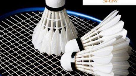 1 hodina badmintonu! Neomezený počet hráčů. Zformujte si postavu!