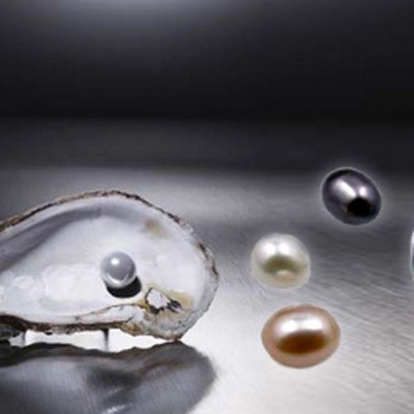 Pravá přírodní perla ukrytá v originální lastuře a krásný náhrdelník k tomu za skvělých 149 Kč! Senzační dárek a překvapení v jednom - to je perla přání se slevou 59 %!