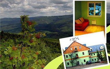 4denní pronájem apartmánu pro 4! Vyrazte s přáteli do Jeseníků do krásného apartmánu!