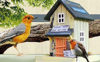 Originální okrasné ptačí budky! Rozveselte zahradu, chatu, ale i okno vašeho bytu!