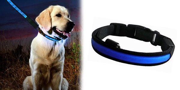 Svietiace LED obojok v modrej farbe pre každého psíka s dobou svietenia až 80 hodín a 4 variantmi svietenie LED pásku!