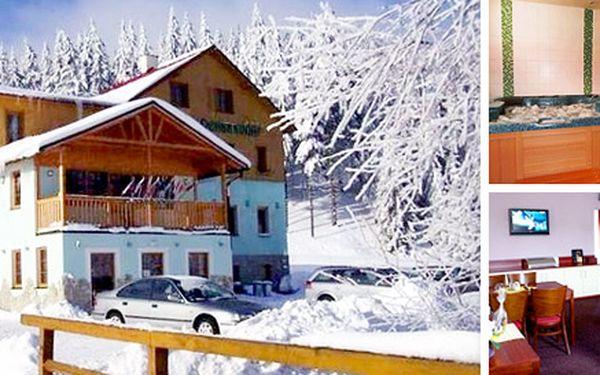 Na lyže do Krušných hor - sauna a whirpool v ceně