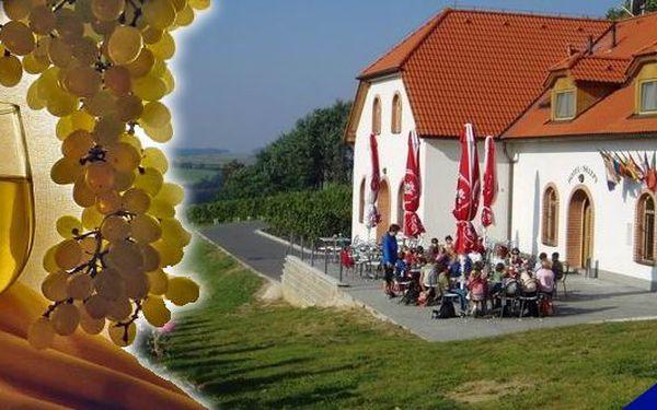 Vinařský pobyt pro 2 osoby na 4 dny v hotelu Sádek*** v nádherném prostředí uprostřed vinic s bohatou polopenzí. Odborná degustace vín s občerstvením a navíc relaxační masáž pro oba. Užijte si perfektní pobyt v krásné přírodě se zajímavými výlety do okolí se slevou 43%!!!