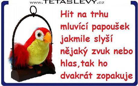 Zábavný a legrační papoušek pro Vaši zábavu opakuje co mluvíte za 199kč poštovné je již v ceně akce