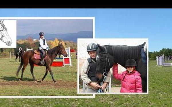 Josef Váňa je jenom jeden, ale i vy se můžete naučit jezdit na koni a starat se o něj. Během dvouhodinového kurzu za 350 Kč dostanete všechny informace a hodinu strávíte v sedle!