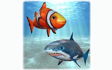 Létající ryba - ŽRALOK SHARK/ NEMO CLOWNFISH I! Nechte si bytem proplout LÉTAJÍCÍ RYBU. Nabízíme tento hit AIR SWIMMER, se slevou 65% za pouhých 599 Kč, nejlevněji na slevových serverech!!