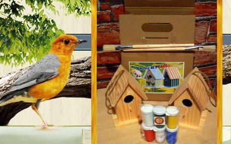 Pomalujte si ptačí budku. Sada obsahuje 2 budky, štětce, barvy i lak.