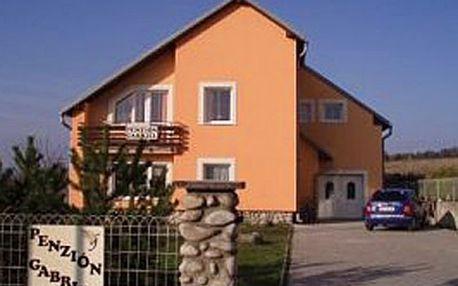 Relaxační pobyt pod Tatrami v milém penzionu Gabriel za 47 € po 50% slevě