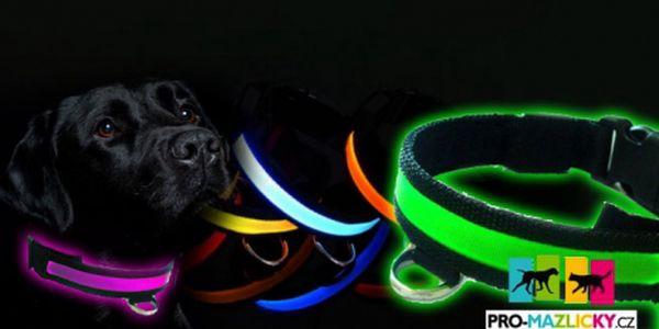 Jen 149 kč Kč za svítící LED obojek pro Vašeho čtyřnohého mazlíčka! V různých barvách a velikostech! Nyní už nehrozí že byste ve tmě ztratili Vašeho mazlíčka z dohledu!