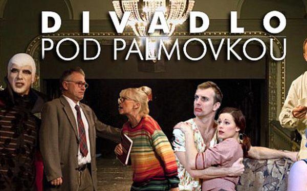 Vstupenka do Divadla Pod Palmovkou