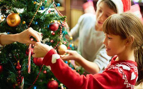Nádherný vánoční stromeček