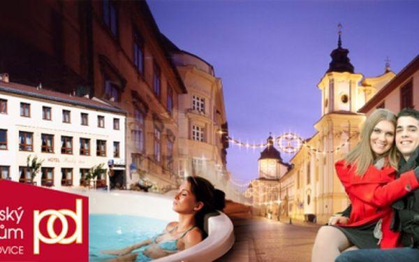 UBYTOVÁNÍ WELLNES - 3 dny pro 2 osoby s vířivou vanou na pokoji a polopenzí! V krásném Hotelu Panský dům Blovice na Plzeňsku! Se slevou 52%!