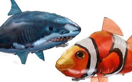 Létající ryba za pouhých 299 Kč! Vánoční HIT se slevou 70%!