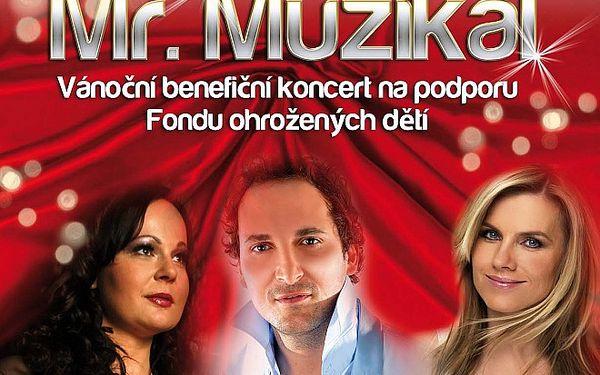 Mr. Muzikál - Vánoční koncert pro podporu Fondu ohrožených dětí