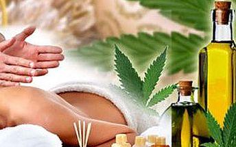 60 minutová masáž dle Vašeho výběru a zábal na ruce za skvělých 250 Kč!