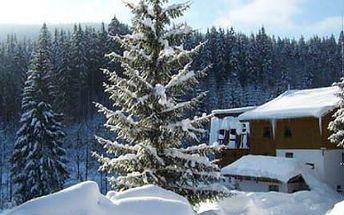 Týdenní pobyt na chatě Tučňák! Užijte si pobyt s polopenzí i lyžování v nedalekých střediscích!