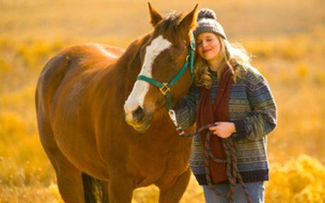 Deset lekcí jízdy na koni pro začátečníky i pokročilé 1× týdně - čas dle výběru