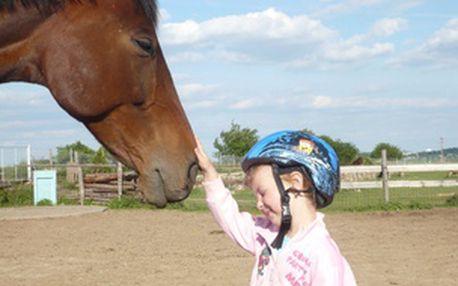 Kurz jízdy na koni pro začátečníky i pokročilé 1× týdně - čas dle výběru
