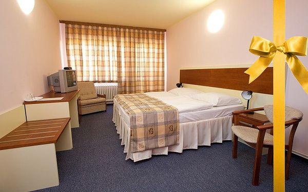Pobyt pro 2 osoby na 3 dny v Poděbradech s polopenzí v hotelu Junior s vínem a možností wellness.