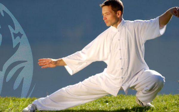 TAI-CHI pro začátečníky s 51% slevou: absolutní relaxace pro tělo i mysl