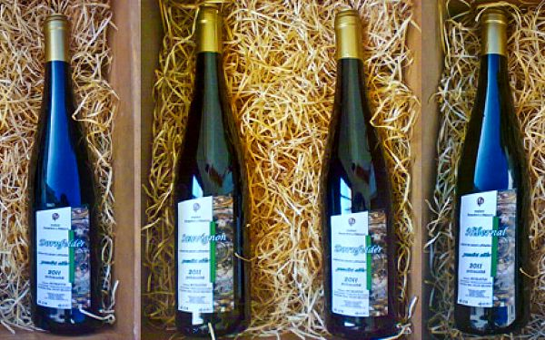 4 přívlastková vína z vinařství Pazderka a Otáhal
