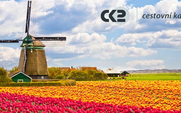 Jarní výlet za holandskými tulipány pro jednoho