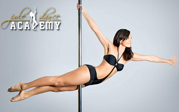 Spevnite si postavu a získajte Vášho vyvoleného sexi krivkami a zmyselným tancom. Len 29 € za 4-hodinový kurz Pole Dance alebo 6,90 € za skúšobnú hodinu Exotic Pole Dance.