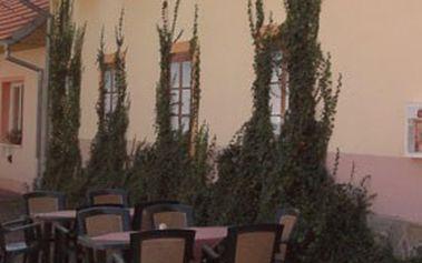 Vinařská perla Jižní Moravy – město Znojmo & 3denní pobyt pro 2 v ***hotelu BAX s polopenzí, welcome drink, láhví vína a poukázkou do italské restaurace