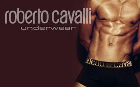 Spodní prádlo a trička Roberto Cavalli