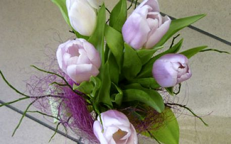 Jen 100 Kč za nádhernou kytici v kombinaci tulipánů doplněnou zelení.