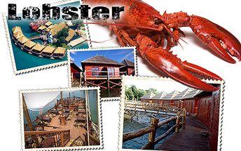 Len 79 € za 3-dňový pobyt pre 2 osoby s raňajkami v Penzióne Lobster na Slnečných jazerách! V cene aj 3 hodinový vstup do Aquaparku Senec a deti do 3 rokov ZADARMO!