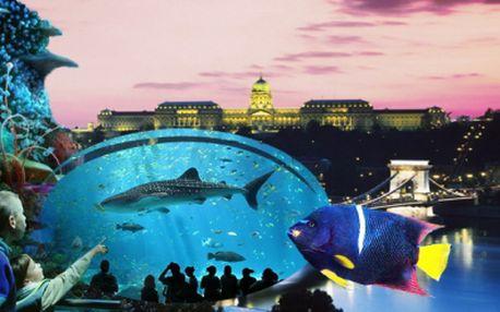 Úžasný poznávací zájazd do BUDAPEŠTI s návštevou TROPICARIA OCEANARIA! Spoznajte krásnu historickú Budapešť a najväčšie morské akvárium v Strednej Európe! Teraz len za 17,90 Eur!